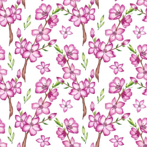 Aquarell kirschblütenmuster Premium Vektoren