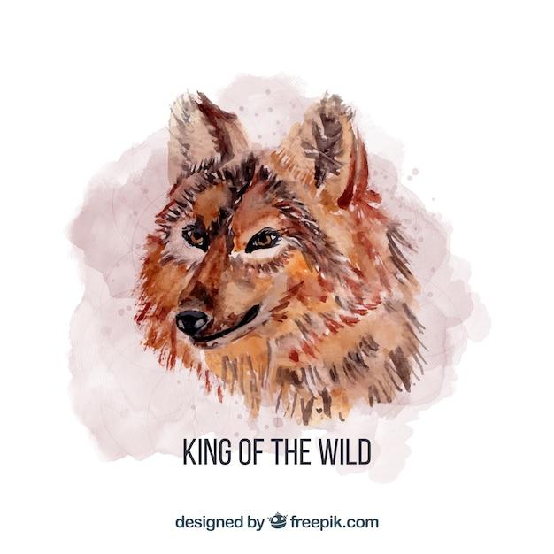 Aquarell könig wolf Kostenlosen Vektoren