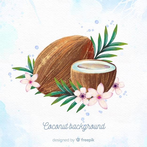 Aquarell kokosnuss abbildung Kostenlosen Vektoren