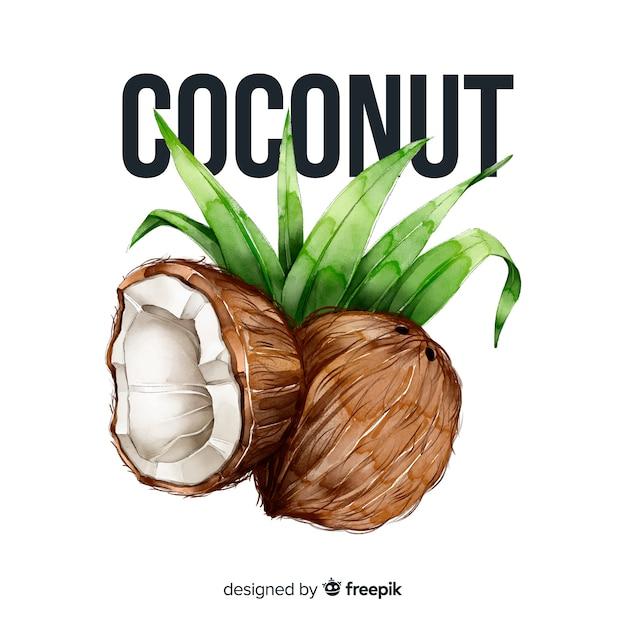 Aquarell kokosnuss Kostenlosen Vektoren