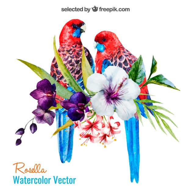 Aquarell Papageien und Blumen Kostenlose Vektoren