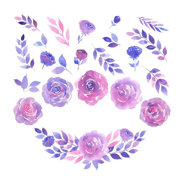 Aquarell-sammlung von lila und rosa rosen, zweigen und blättern Premium Vektoren