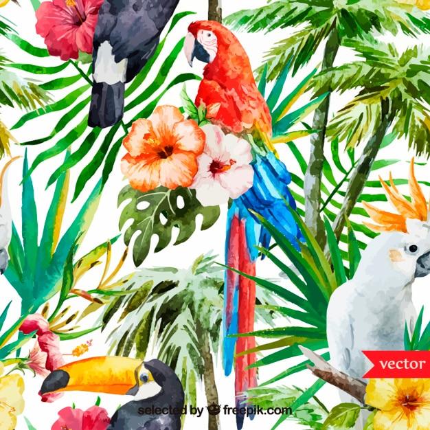 Aquarell tropischen Hintergrund Kostenlose Vektoren