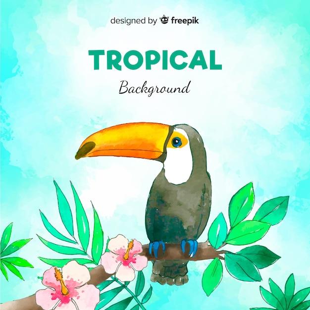 Aquarell tropischen hintergrund Kostenlosen Vektoren