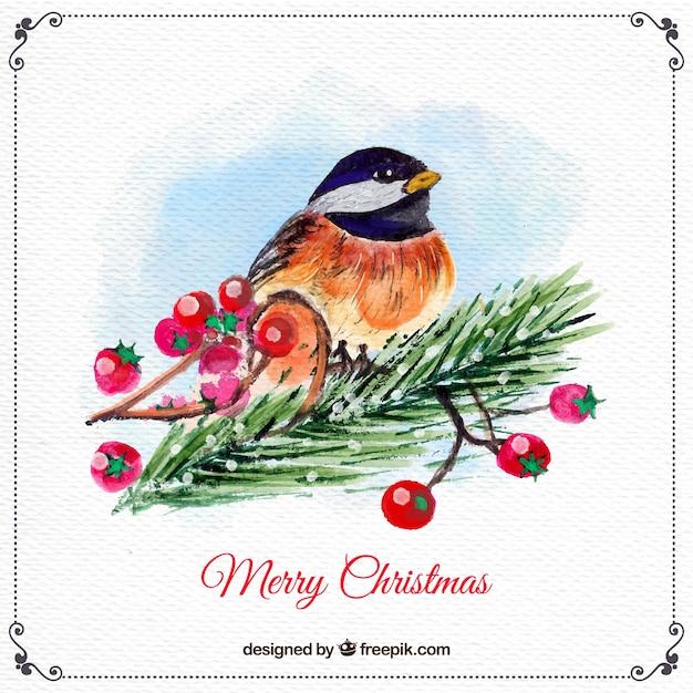 Aquarell vogel weihnachten hintergrund download der kostenlosen vektor - Aquarell weihnachten ...