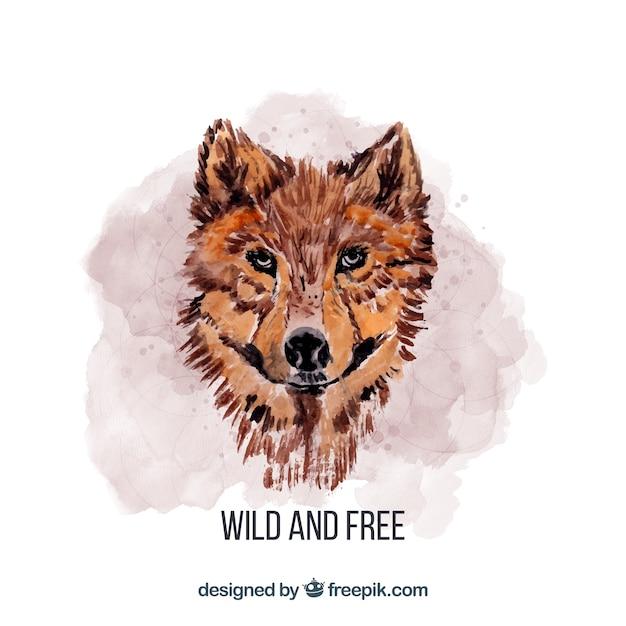 Aquarell wolfs gesicht Kostenlosen Vektoren