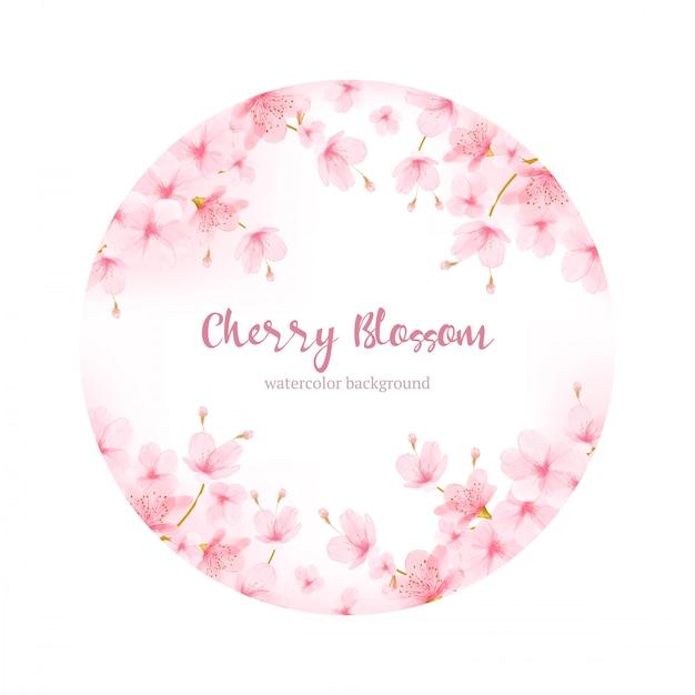 Aquarellblumen cherry blossom frame vector Premium Vektoren