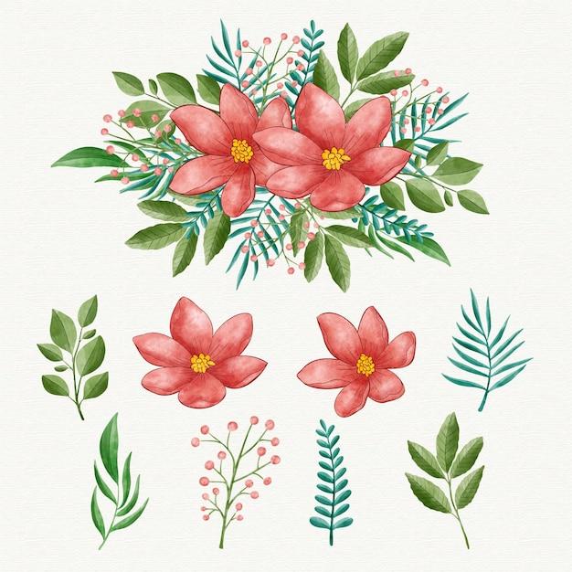 Aquarellblumensammlung Kostenlosen Vektoren