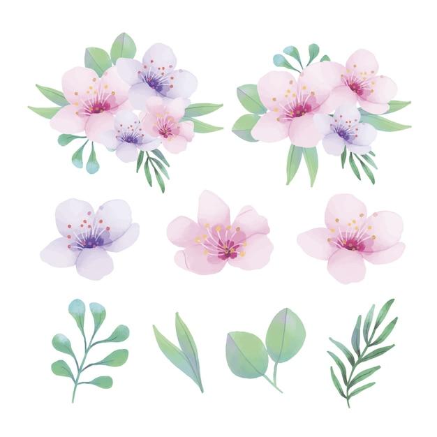 Aquarellblumenverzierungen mit unterschiedlicher art von blättern Kostenlosen Vektoren