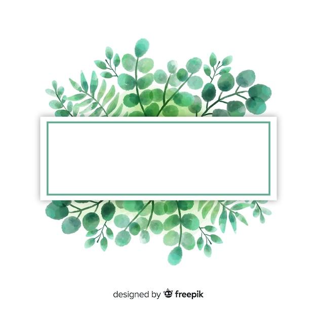 Aquarelleukalyptus verlässt hintergrund Kostenlosen Vektoren