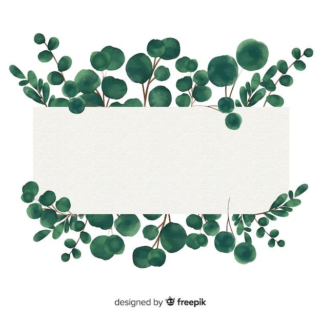 Aquarelleukalyptusfahne mit leerer fahne Kostenlosen Vektoren