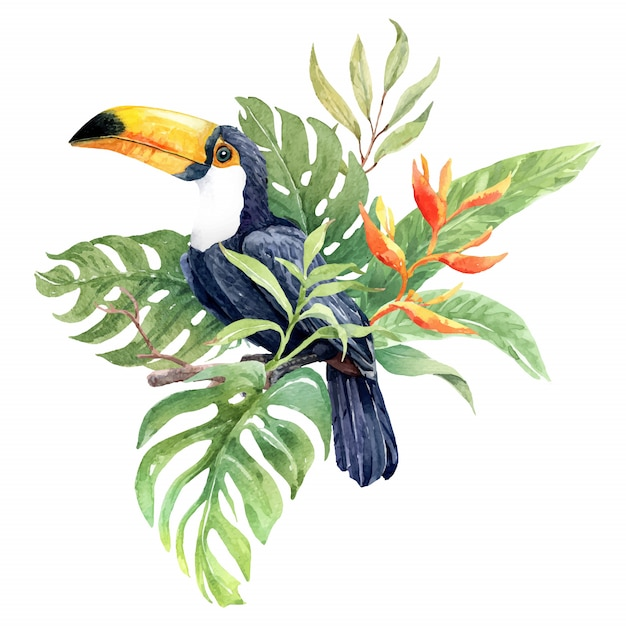 Aquarelltukanvogel auf der niederlassung mit tropischem blatt Premium Vektoren