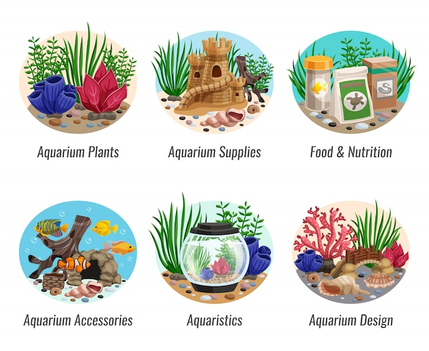 Aquarium kompositionen set Kostenlosen Vektoren