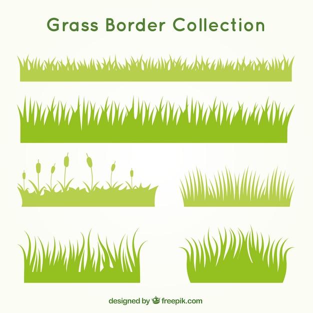 Arten von gras set Kostenlosen Vektoren