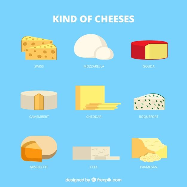 Arten von leckeren käse Kostenlosen Vektoren