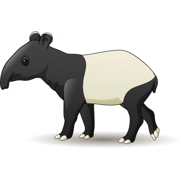 Asiatischer tapir der karikatur lokalisiert auf weißem hintergrund Premium Vektoren