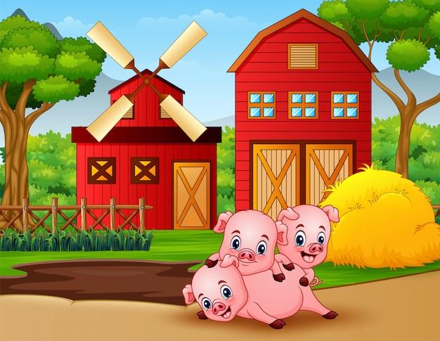 Auf dem hof spielen drei kleine schweine Premium Vektoren
