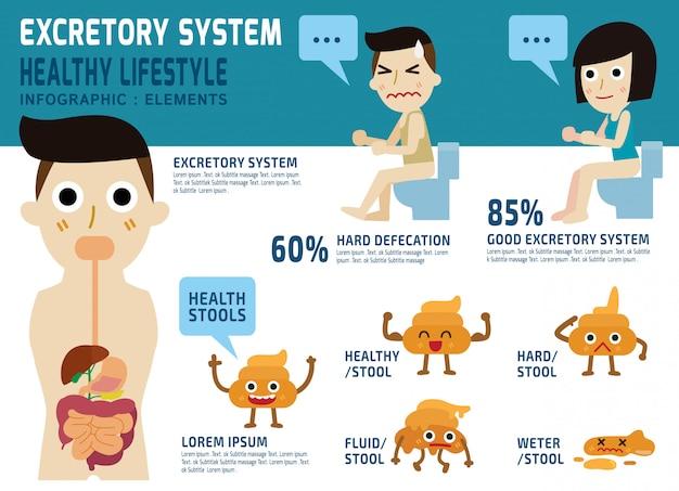 Ausscheidungssystem gesundheitswesen konzept. Premium Vektoren