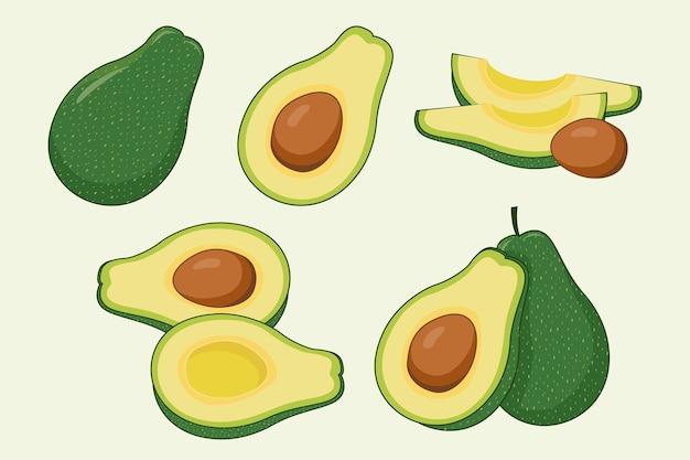 Avocado-illustrationssatz Premium Vektoren