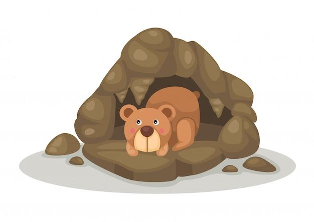 Bär, der im höhlenvektor schläft Premium Vektoren