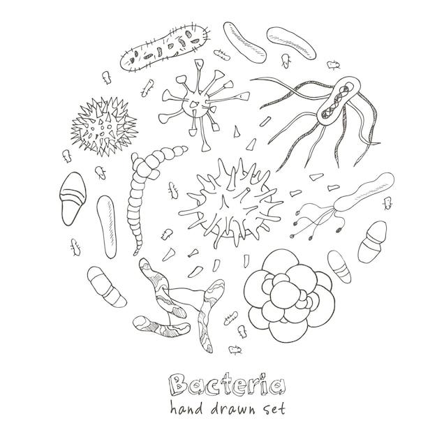 Bakterienvirus-symbole eingestellt. skizzen. handzeichnung. Premium Vektoren