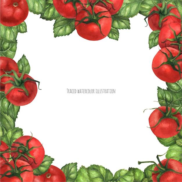Basilikum und tomaten quadratischer rahmen Premium Vektoren