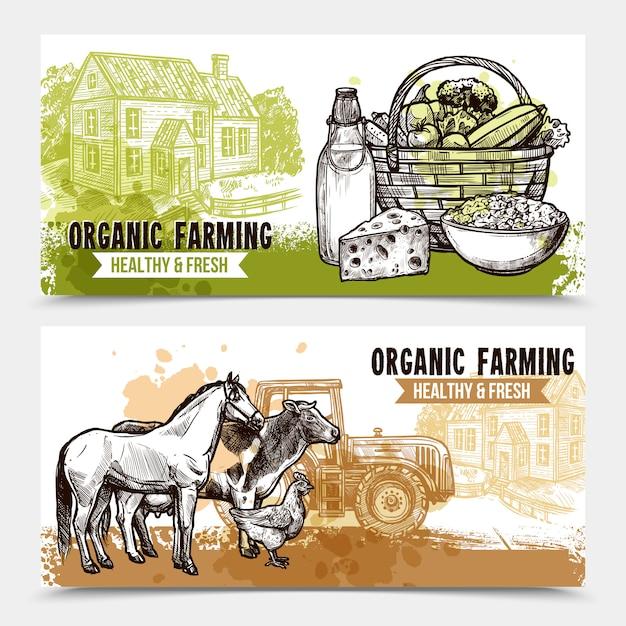 Bauernhof horizontale banner Kostenlosen Vektoren