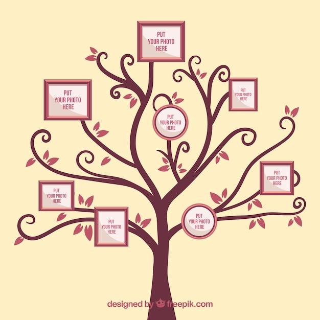 Baum mit rahmen an der wand Kostenlosen Vektoren