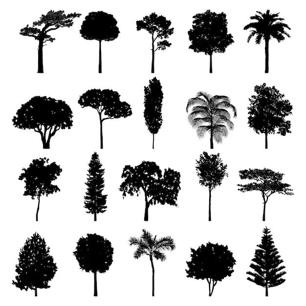 Baum silhouette sammlung Kostenlosen Vektoren