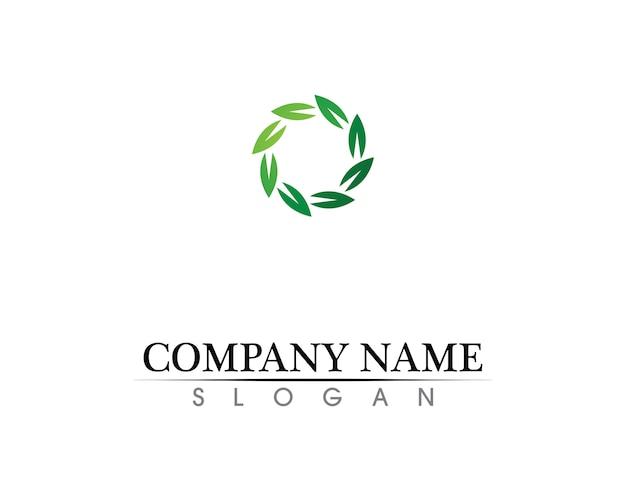 Baumblattvektor-logodesign, umweltfreundliches konzept. Premium Vektoren