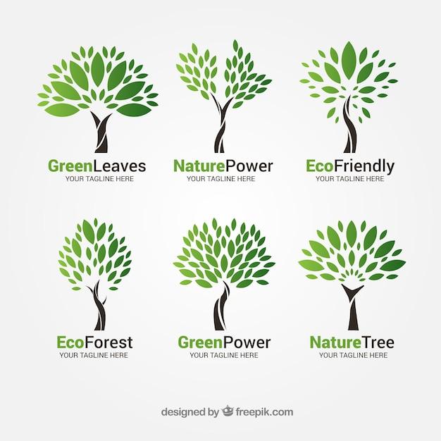 Baumlogosammlung in der flachen art Premium Vektoren