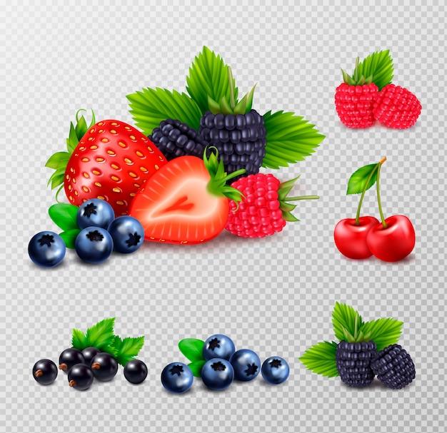 Beerenfrucht realistischer satz mit gruppen reifer beeren und grüner blätterbilder auf transparentem hintergrund Kostenlosen Vektoren