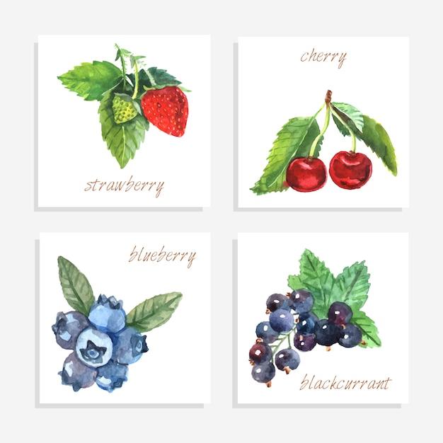 Beerenpapierkarten mit aquarellerdbeerkirscheblaubeere und schwarzer johannisbeere lokalisierten vektorillustration Kostenlosen Vektoren