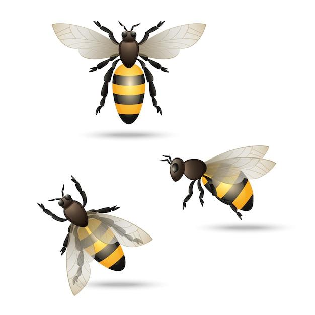 Bienen icons set Kostenlosen Vektoren