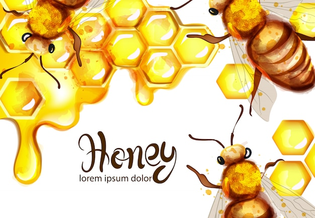 Bienenwaben- und bienenaquarell Premium Vektoren