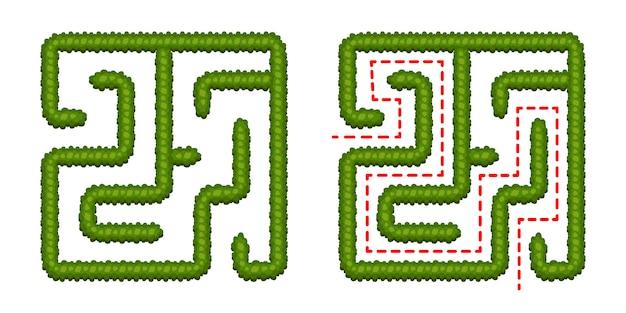 Bildungslogikspiel-buschlabyrinth für kinder. finde den richtigen weg. lokalisiertes einfaches quadratisches labyrinth auf weißem hintergrund. mit der lösung. vektor-illustration Premium Vektoren