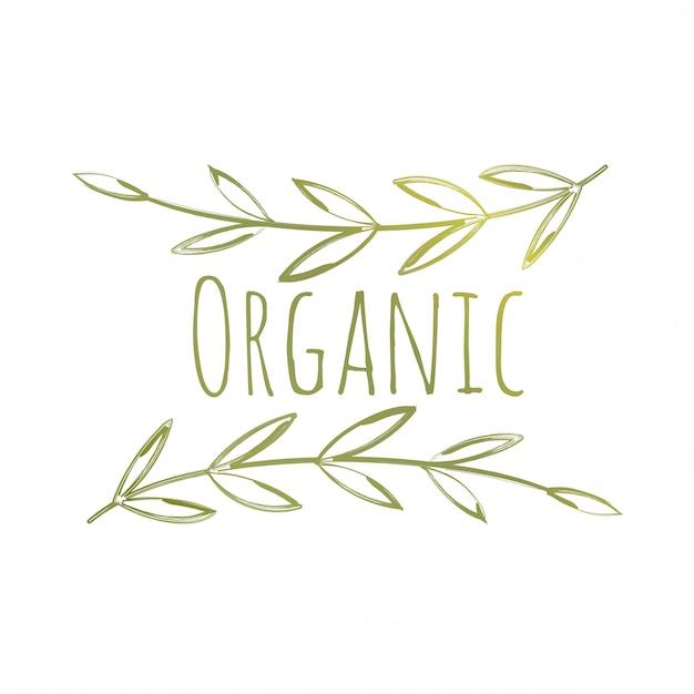 Bio-öko-label Premium Vektoren