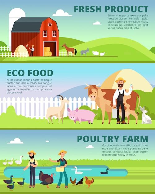 Biolandbau- und agrargeschäftfahnen mit karikaturlandwirtcharakteren und vieh vector satz Premium Vektoren