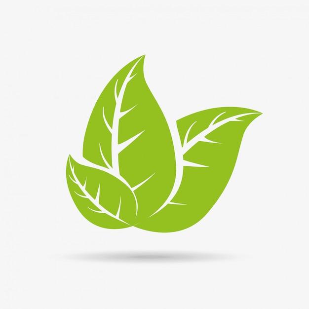 Blätter hintergrund Premium Vektoren