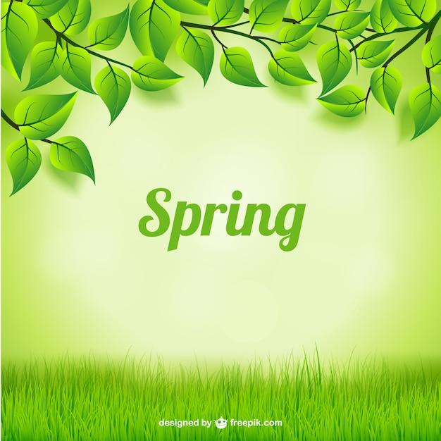 Blätter und gras hintergrund Kostenlosen Vektoren