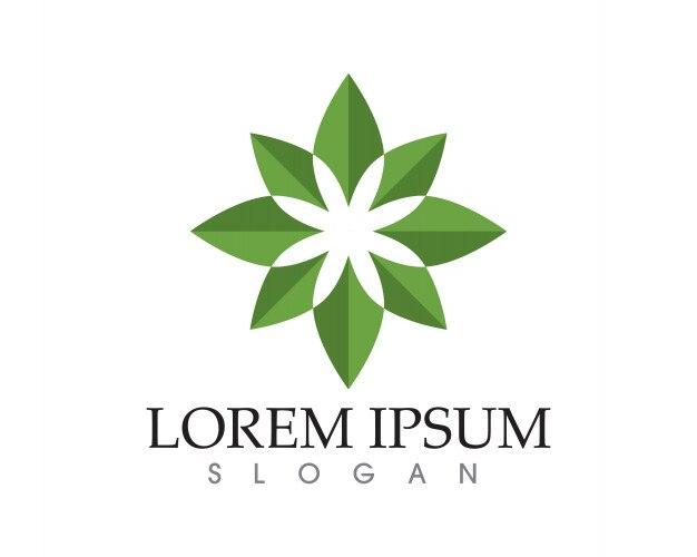 Blatt grüne Natur Logo und Symbolvorlage   Download der Premium Vektor