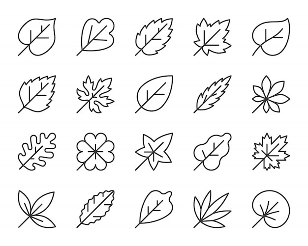 Blattlinie ikonensatz, einfaches zeichen des herbstlaubs, ahorn, eiche, klee, birkenblätter. Premium Vektoren