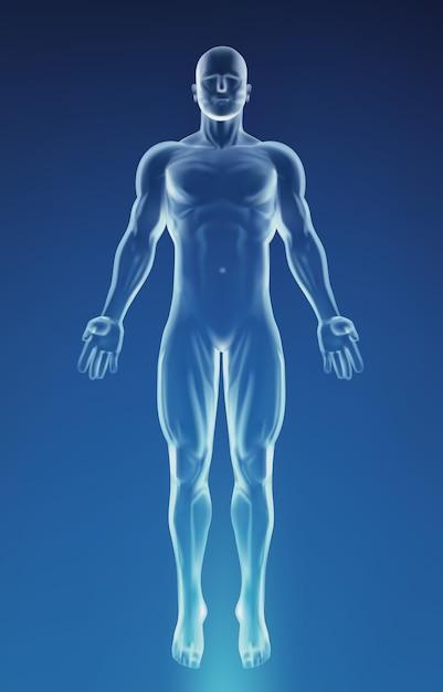 Blauer körper der menschlichen anatomie Premium Vektoren