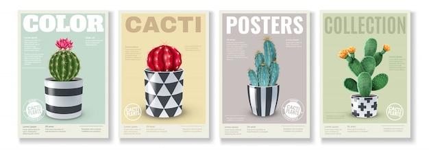 Blühende kakteen-sorten 4 realistische mini-poster mit beliebten zimmerpflanzen in dekorativen töpfen Kostenlosen Vektoren