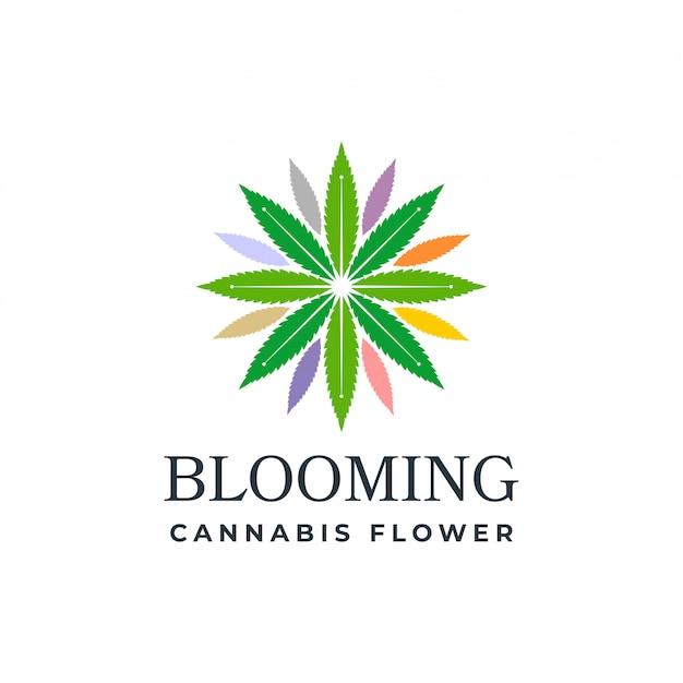 Blühender hanf Premium Vektoren