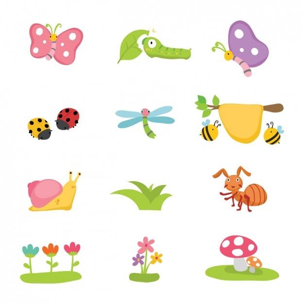 Blumen und insekten-sammlung Kostenlosen Vektoren