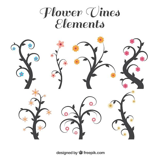 Blumen weinberge Kostenlosen Vektoren