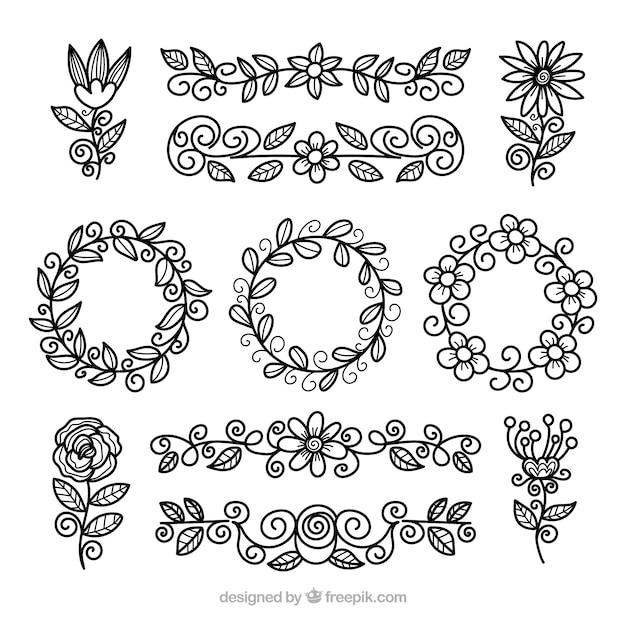 Blumenelementsammlung mit verschiedenen spezies Kostenlosen Vektoren