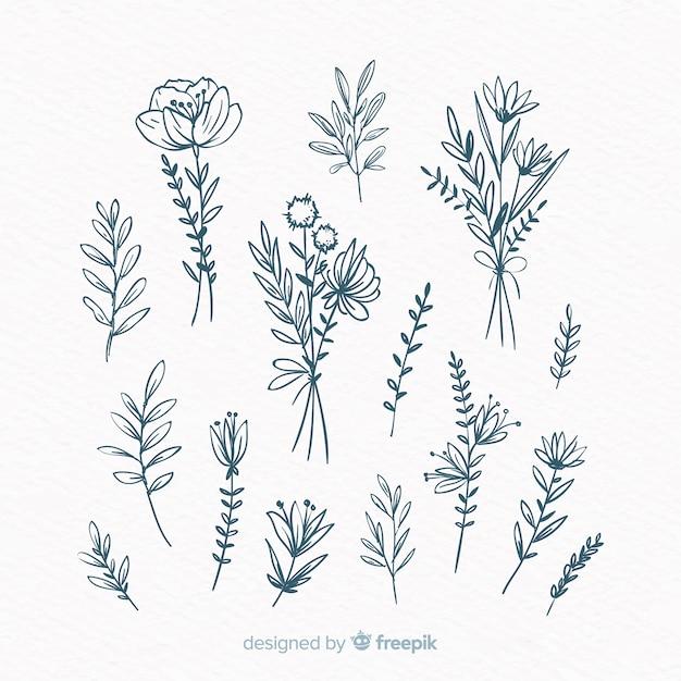 Blumenhand gezeichnete verzierungssammlung Kostenlosen Vektoren