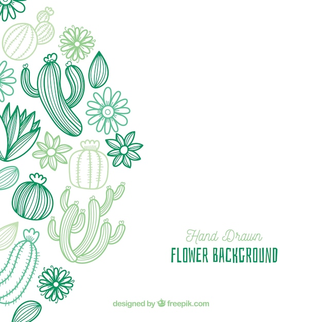 Blumenhintergrund mit hand gezeichnetem kaktus Kostenlosen Vektoren